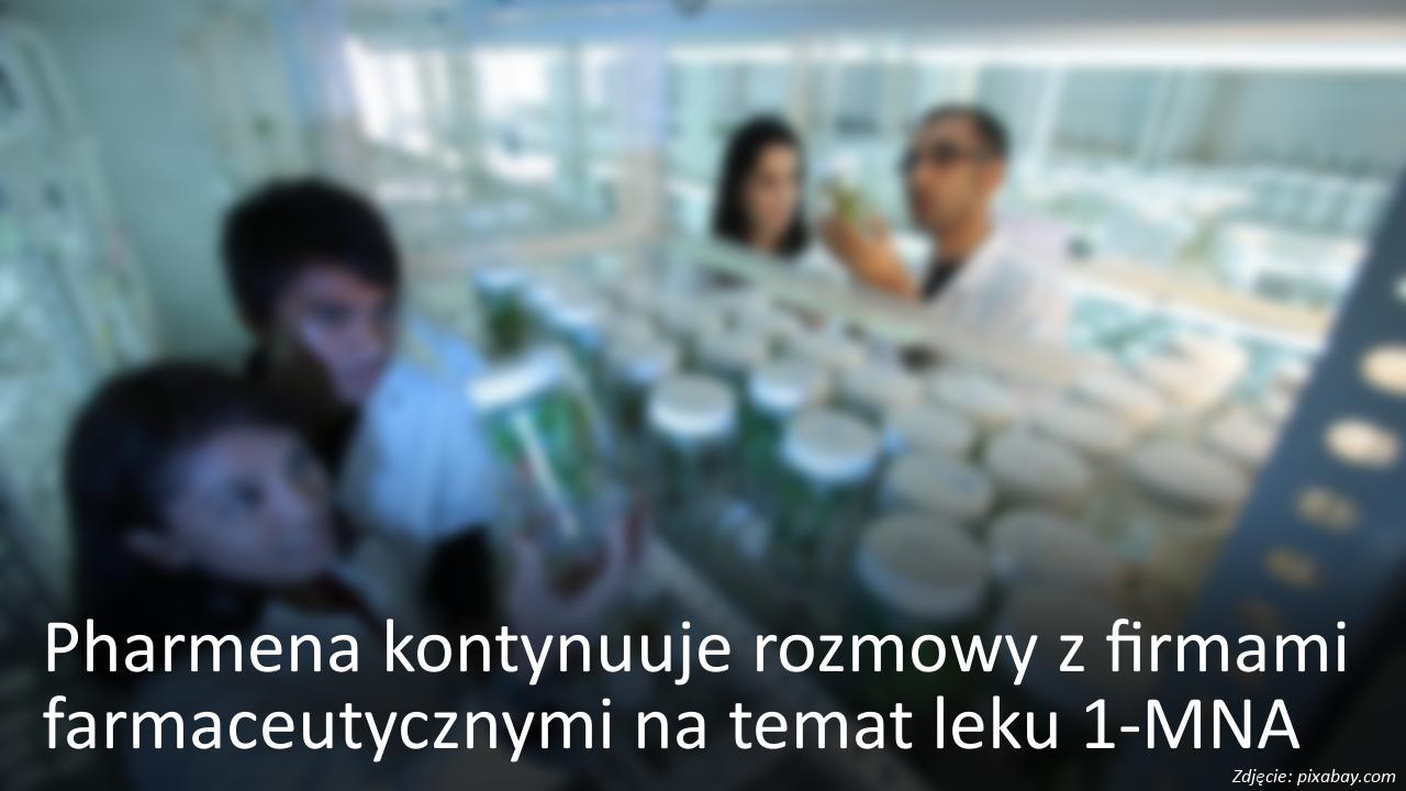 Pharmena kontynuuje rozmowy z firmami farmaceutycznymi nt. leku 1-MNA