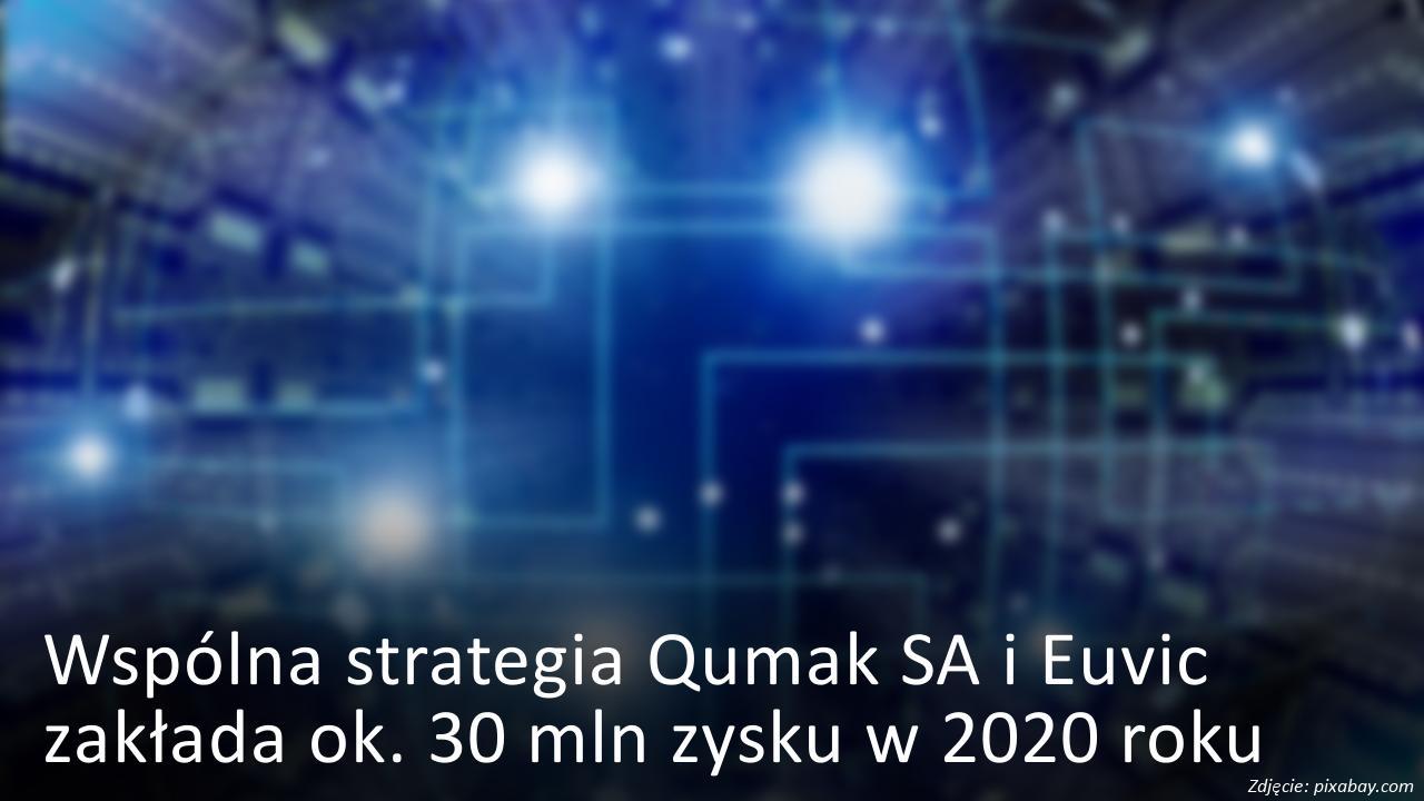 Wspólna strategia Qumak i Euvic