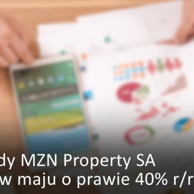 MZN Property